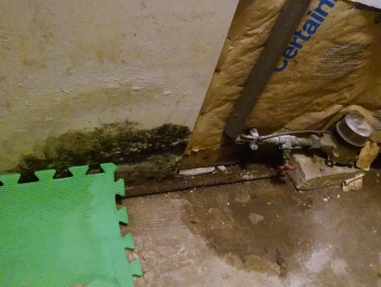 Pipe leak mold