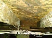 Mold crawlspace
