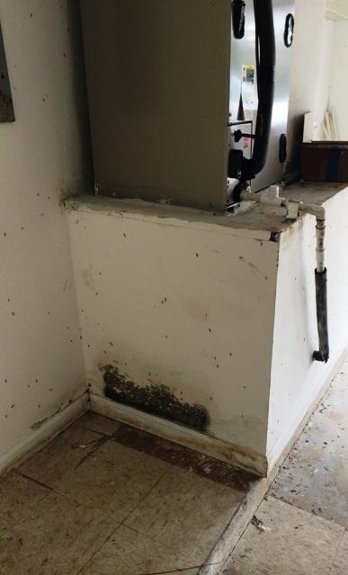 AC leak mold