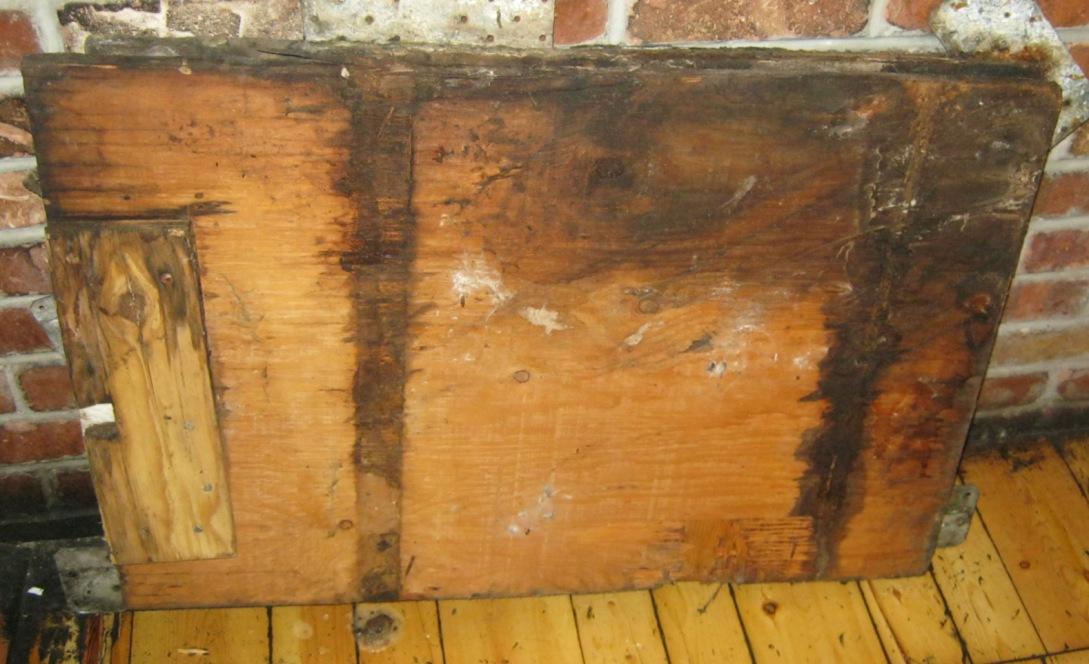 Moldy wood