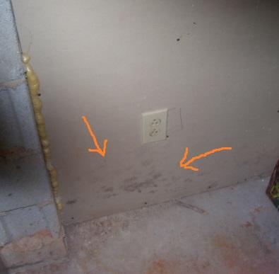 mold on basement wall