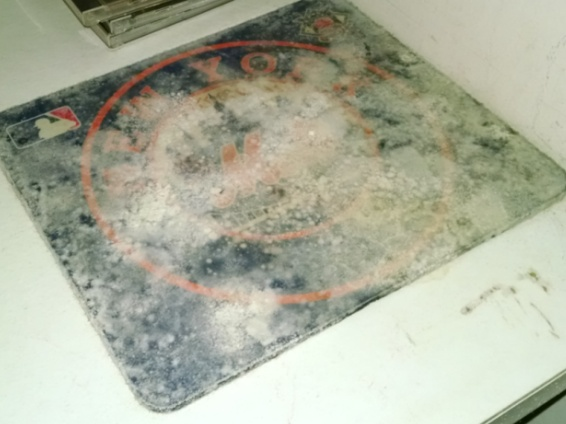 mold on mouse pad