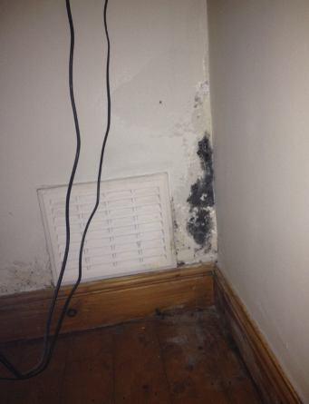 Mold In Bathroom Landlord Responsibility apartment mold .landlord and tenant responsibility