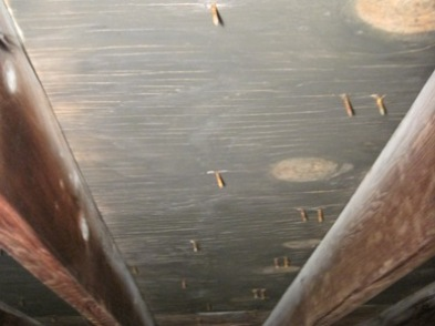 attic mold treatment