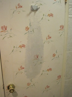 mold on bathroom wall