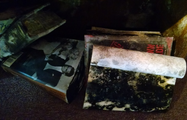 black mold books