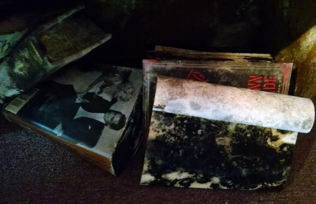 black mold books