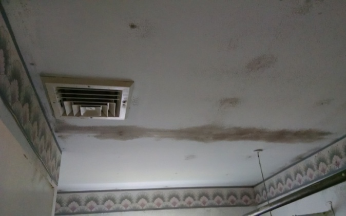 Black mold on ceiling