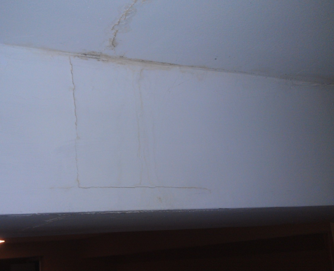 Basement ceiling mold