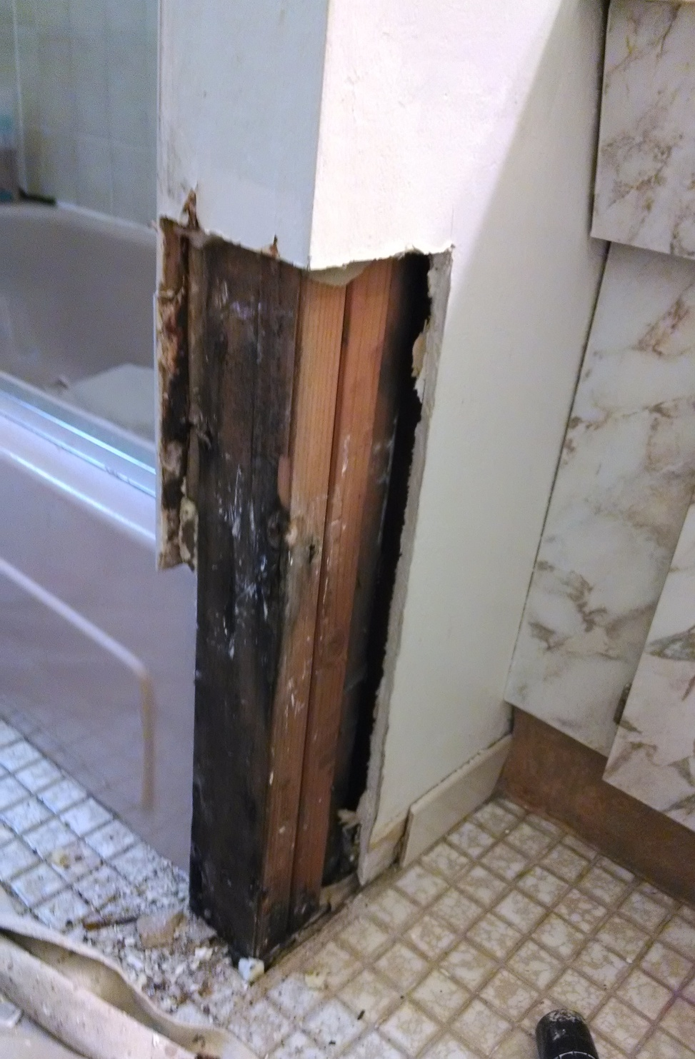 How To Remove Black Mold Behind Walls In Bathroom