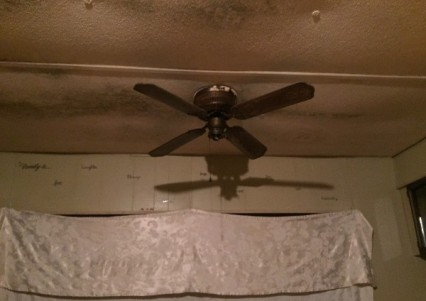 mobile home ceiling with mold