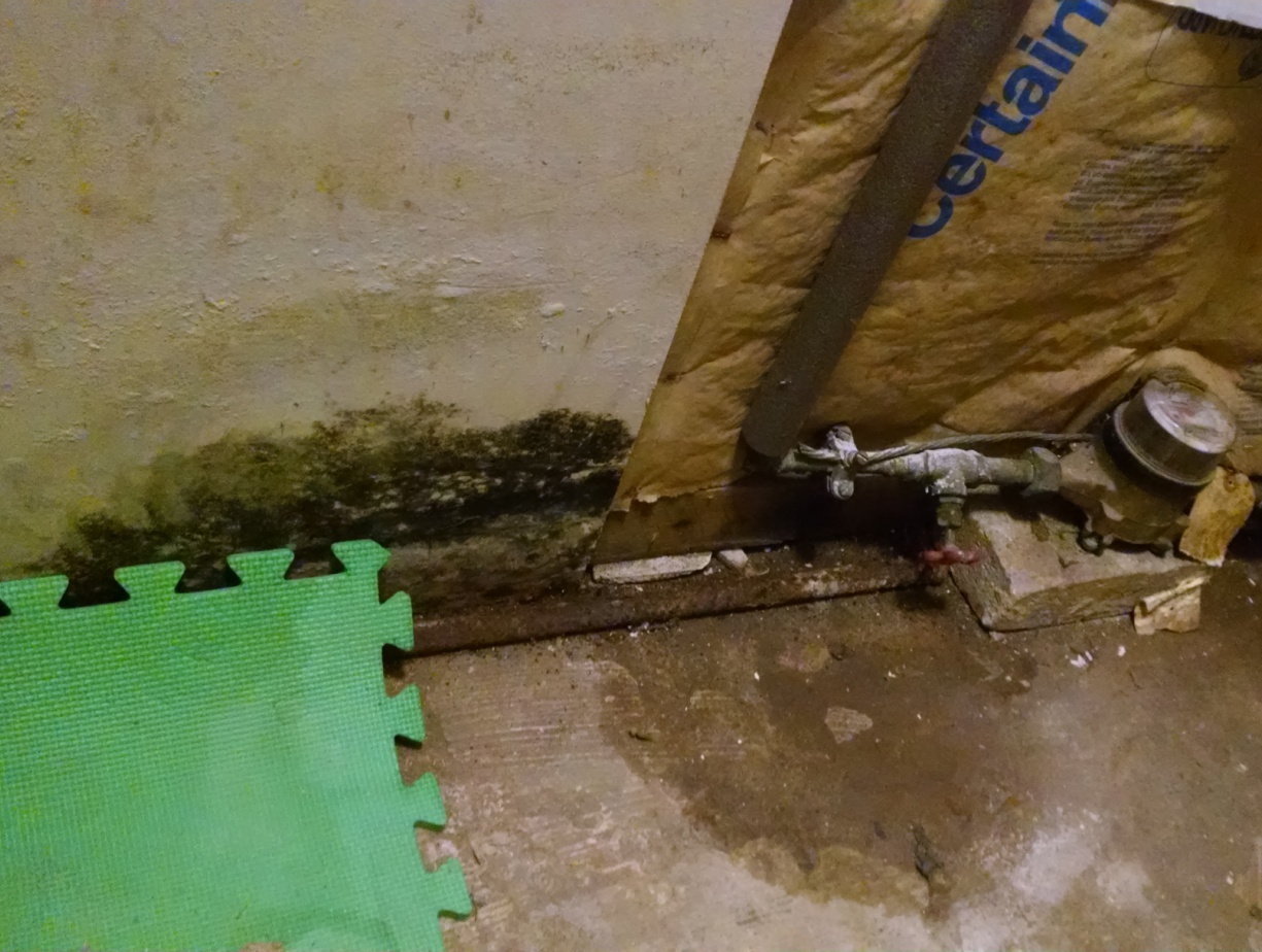 Pipe leak mold