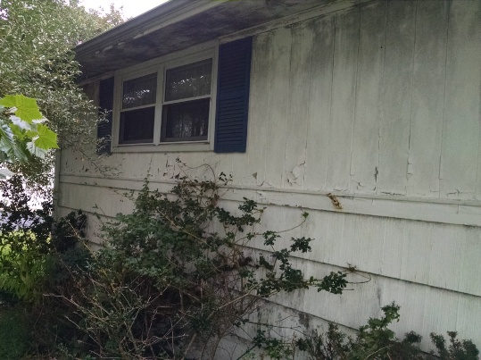 Mold On Exterior Of Homes Removal Damage Health Issues