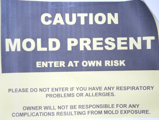 Mold Warning Sign