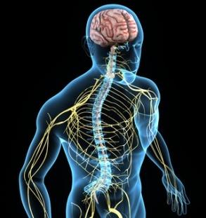 mold neurological symptoms
