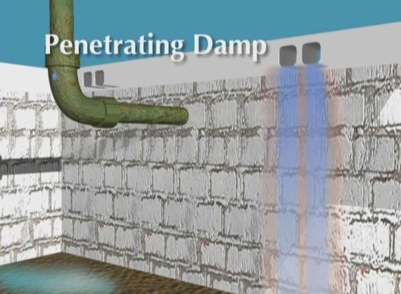 Penetrating Damp in Crawlspace