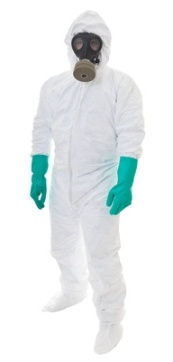 do it yourself mold removal