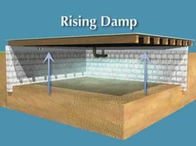 Rising Damp in Crawlspace