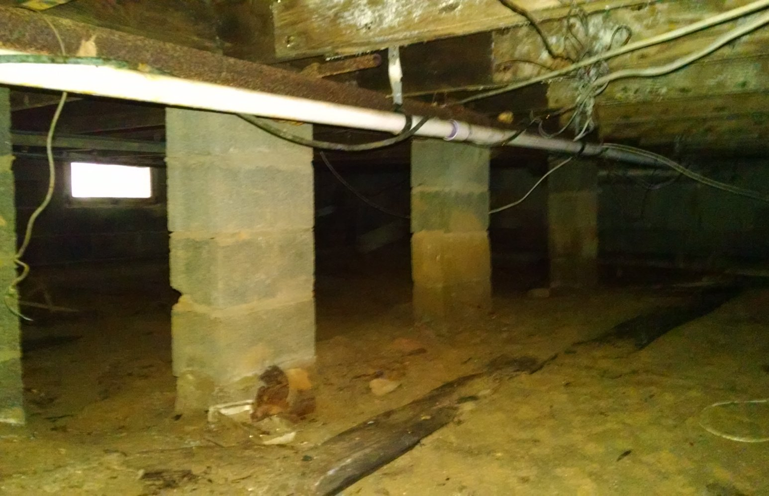 Crawlspace with mold