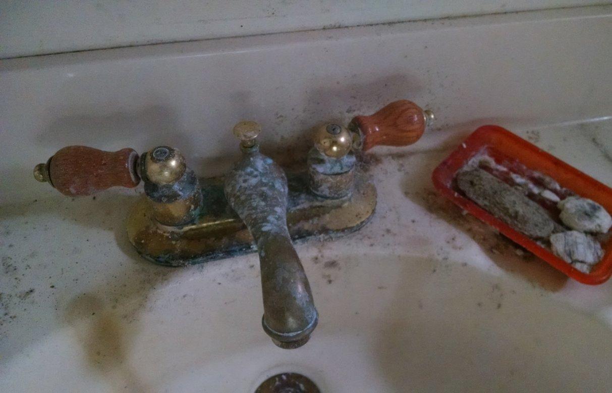 Moldy sink