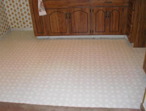 Mold under vinyl flooring
